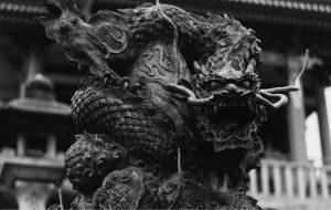 Postikuva Yleinen itämainen lohikäärme 300x190 - Postikuva---Yleinen itämainen lohikäärme